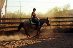 Lucky Ranch centre equestre